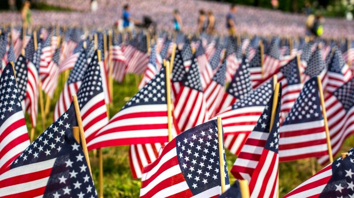 Many small American flags in soldier's cemetary